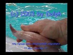 Dolphin Male Cumming