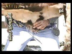 Petlust M11 2 Zoo Bull Sex Farm Boys (part 4)