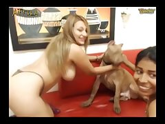 Horny Girls Play With Dog On Chaturbate (part 5)