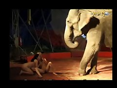 Elephant with Milly (part 3)